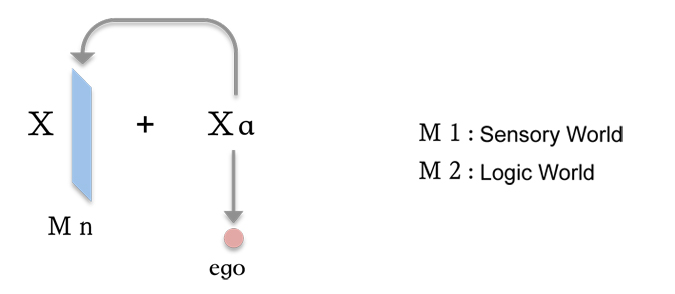 Integral Field, Conscious Field, Physical Field, and Ego